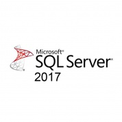 Microsoft SQL Server Standard SQL 2017 English DVD 10 Clt